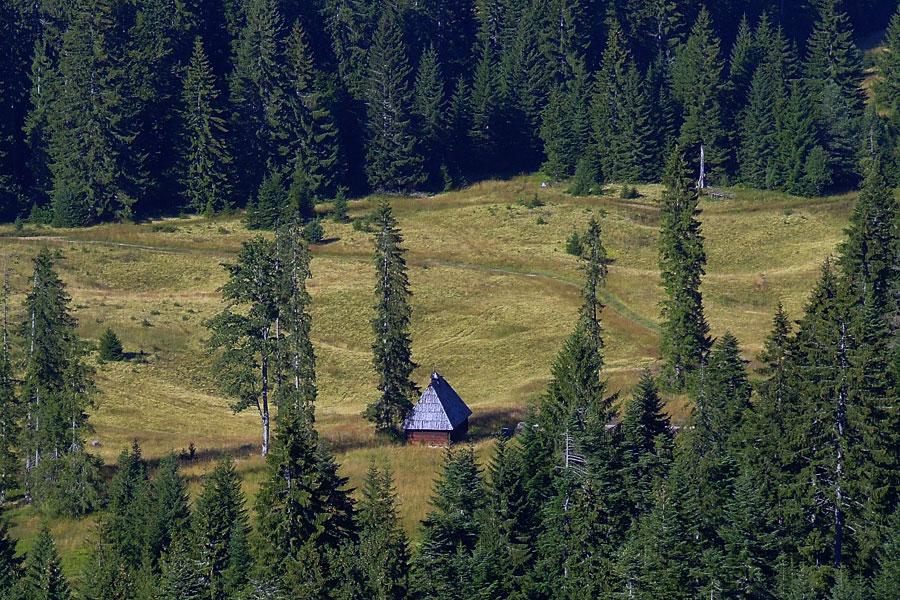 Nationalpark Tara
